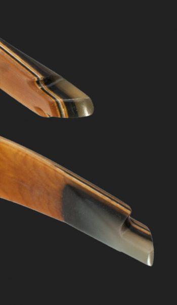 Tips dei limb dell arco ricurvo Tradizionale Testarossa